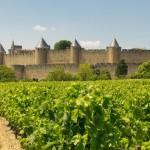 LE ROUSSILLON, ses vignobles, son histoire Cathare